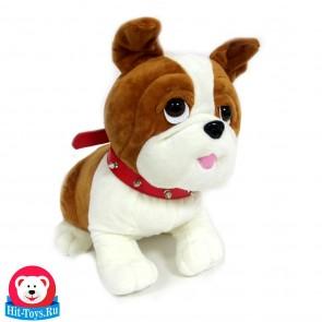 Собака сидит 17165-30