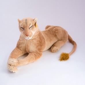 Львица лежит,1766/110