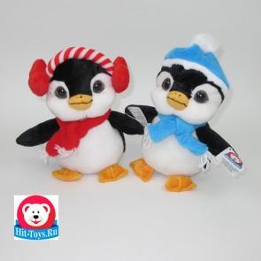 Пингвин Шапка, 20197/21